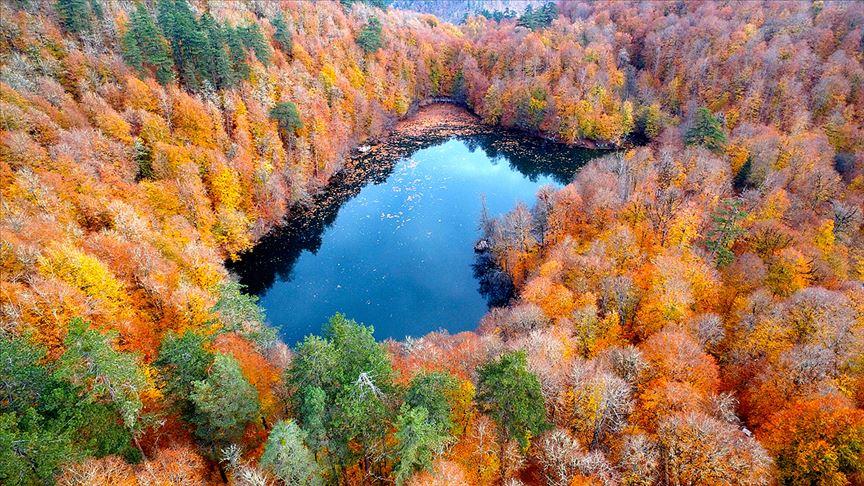 Türkiye'de 3,2 milyon hektar alana 'özel statülü' koruma