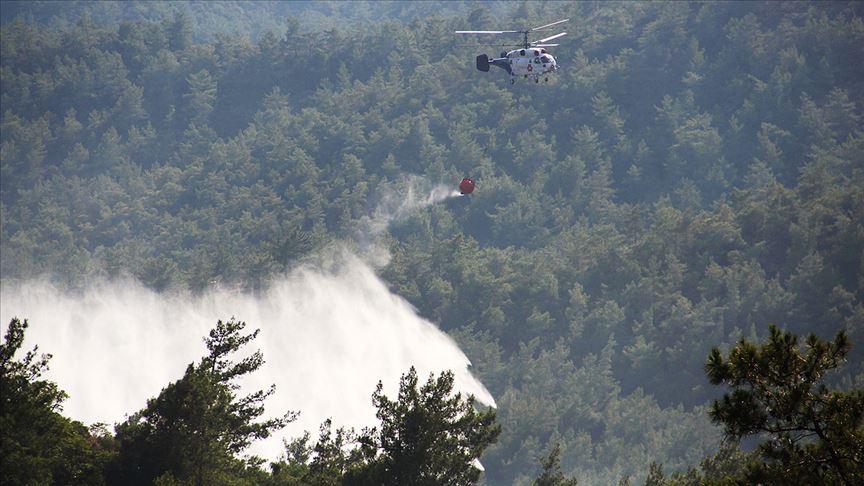 Marmaris'te orman yangını