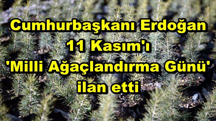Cumhurbaşkanı Erdoğan 11 Kasım'ı 'Milli Ağaçlandırma Günü' ilan etti