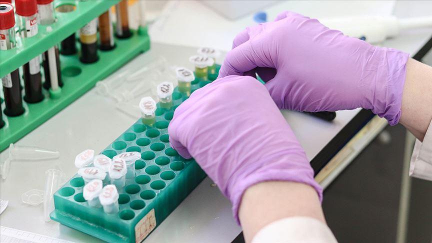 Hastalıklara 'hücresel tedavi' ile şifa aranıyor