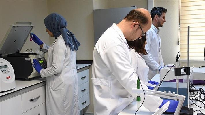 Türk bilim insanlarından kansızlık ilacında dışa bağımlılığın azaltmasında önemli proje