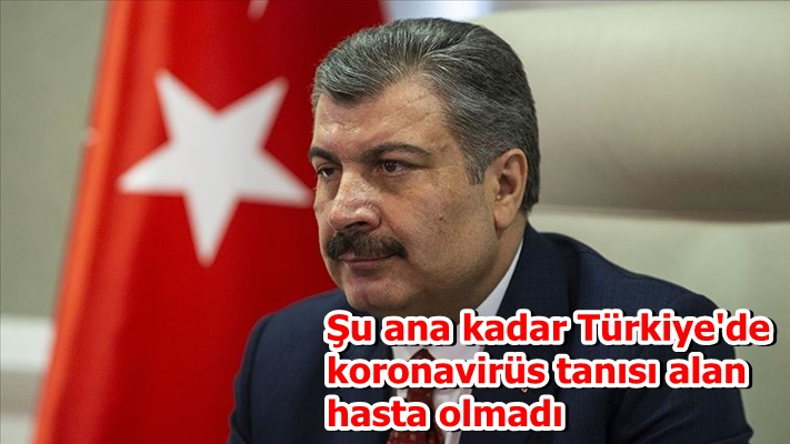 Şu ana kadar Türkiye'de koronavirüs tanısı alan hasta olmadı