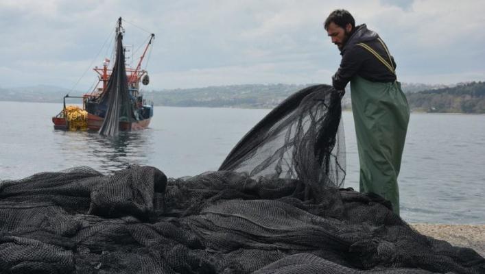 Dikkat! Karadeniz'deki balıklar azalıyor