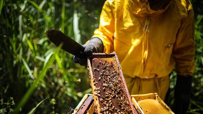 Gıda güvenliği tüm dünyada en önemli problemlerin başında gelecek
