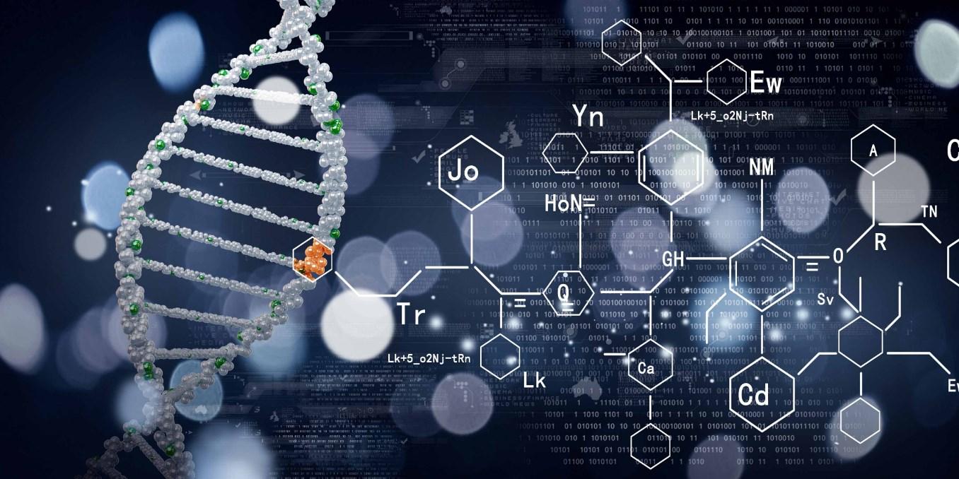 Biyokimya (2 Yıllık) 2019 Taban Puanları ve Başarı Sıralamaları