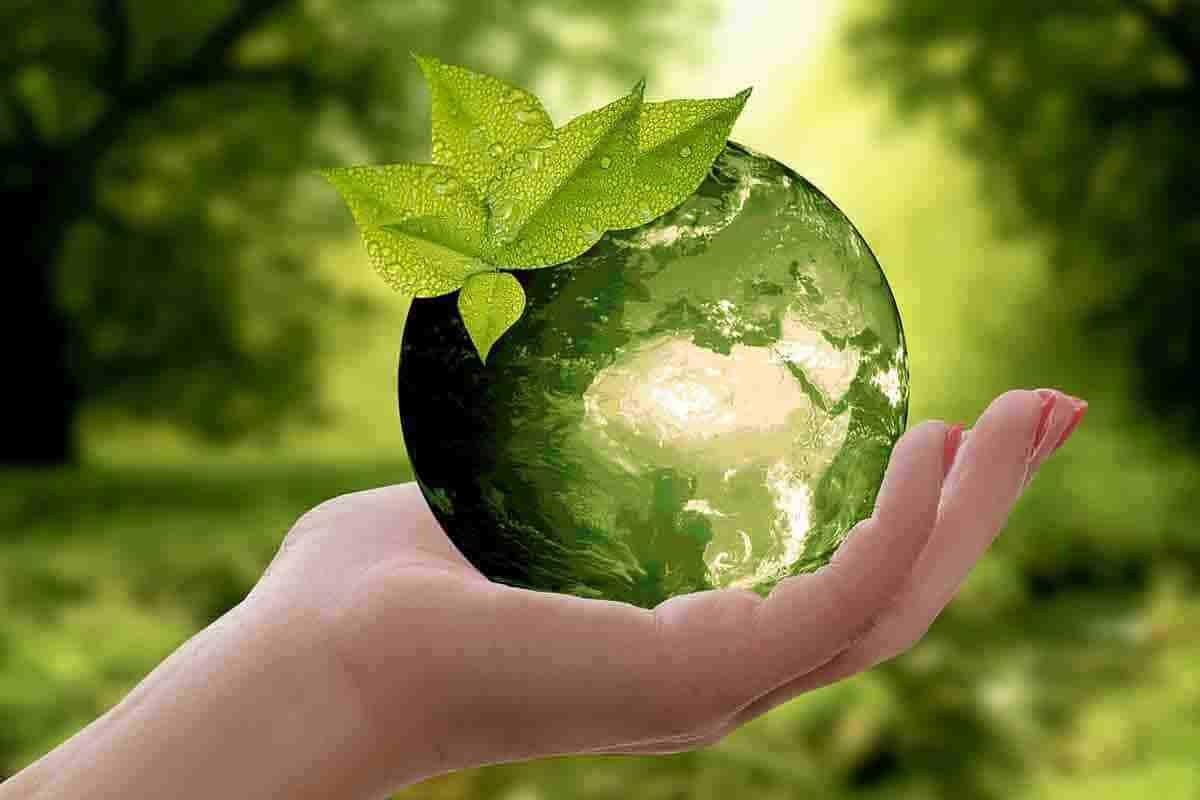 Çevre Sağlığı (2 Yıllık) 2019 Taban Puanları ve Başarı Sıralamaları