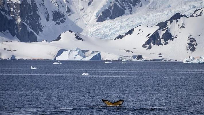 Türk ekibi pazar günü Antarktika yolculuğuna başlayacak