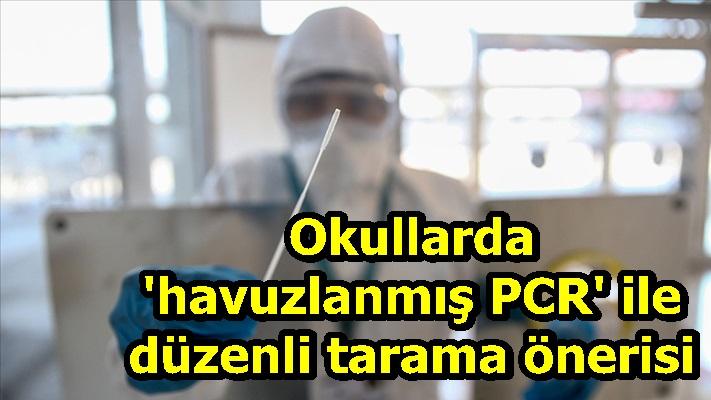 Okullarda 'havuzlanmış PCR' ile düzenli tarama önerisi