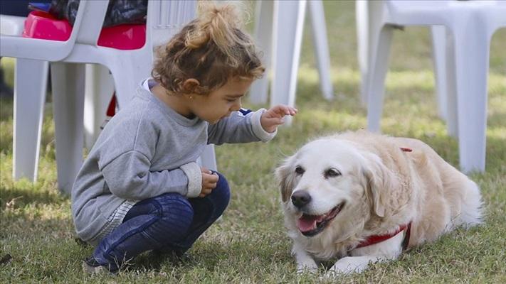 DNA araştırması köpeklerin insanoğlunun en eski hayvan dostu olduğunu gösterdi