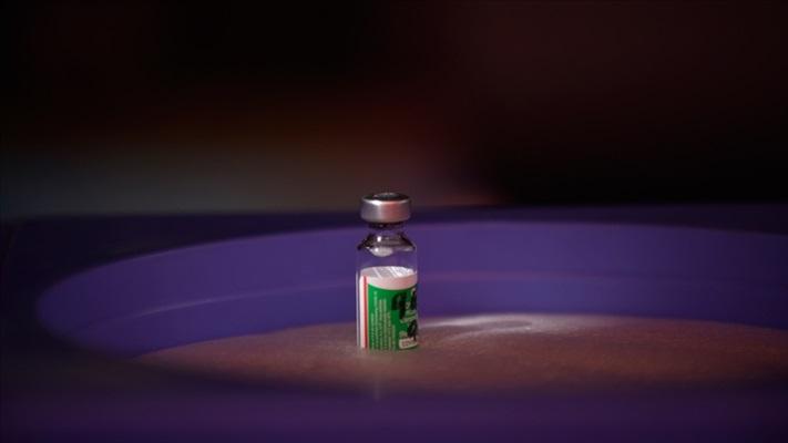 DSÖ, Oxford-AstraZeneca'nın Kovid-19 aşısının 'acil kullanımı' için karar aşamasında