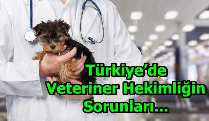 Türkiye'de veteriner hekimliğin sorunları...