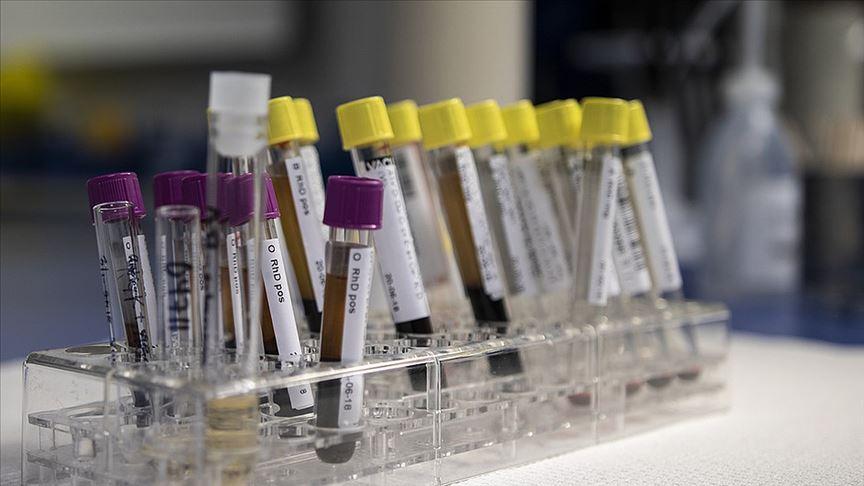 'Hemofilide sağ kalım süresi sağlıklı bireylerle benzer'