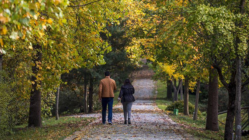 'Yürümek ömrü uzatıyor'
