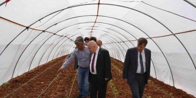 Üniversite bünyesinde organik ürün yetiştiriliyor