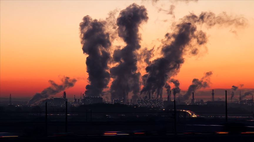 'Hava kirliliği, ekosisteme olumsuz etkisi olan bir çevre sorunudur'