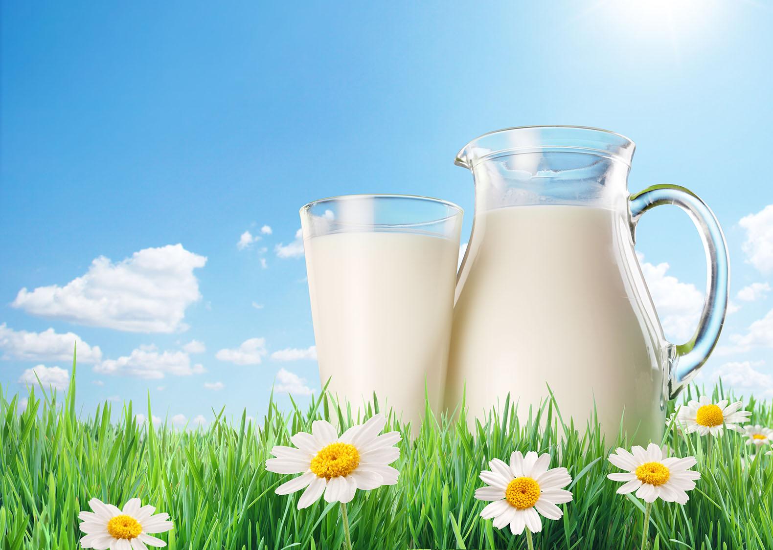 Yarım litre süt, 5 kilogram etle eş değerde!