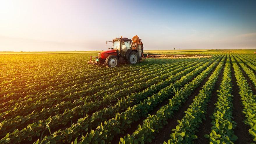 Tarım (2 Yıllık) 2019 Taban Puanları ve Başarı Sıralamaları