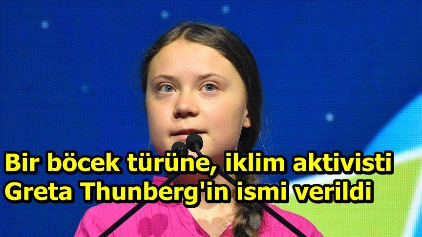 Bir böcek türüne, iklim aktivisti Greta Thunberg'in ismi verildi
