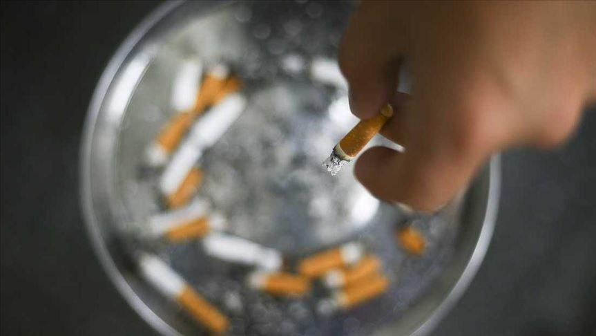 '2012'den bu yana tütün kontrolünde geriledik'