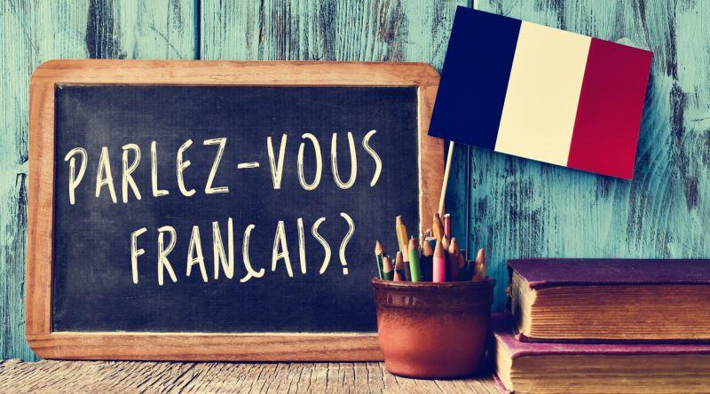 Fransız Dili ve Edebiyatı 2019 Taban Puanları ve Başarı Sıralamaları