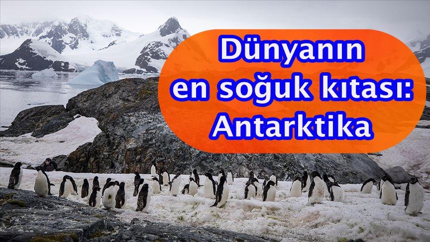 Dünyanın en soğuk kıtası: Antarktika