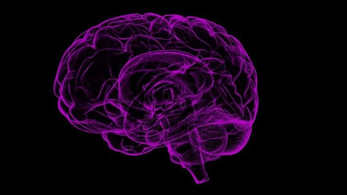 'Dünyada tahminen 65 milyon epilepsi hastası var'