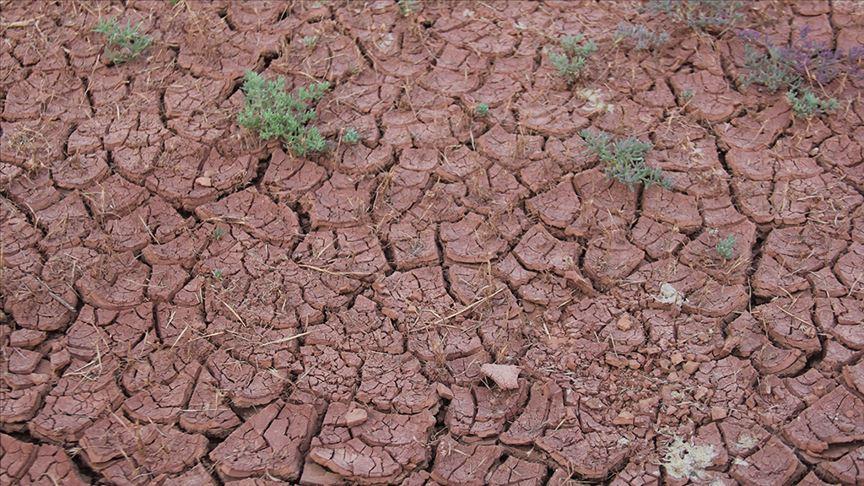İklim değişikliğinin kaderini Kuşak ve Yol Girişimi belirleyebilir