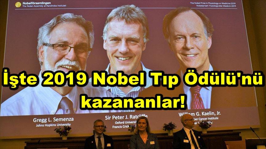 İşte 2019 Nobel Tıp Ödülü'nü kazananlar!