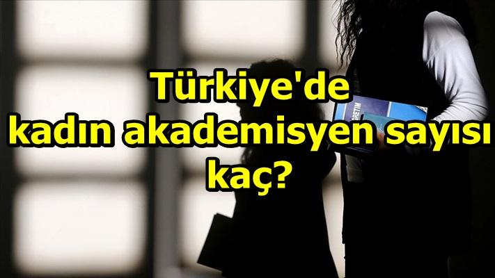 Türkiye'de kadın akademisyen sayısı kaç?