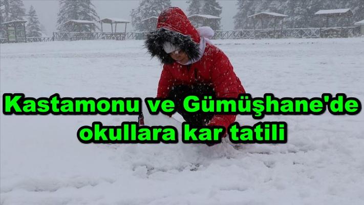 Kastamonu ve Gümüşhane'de okullara kar tatili