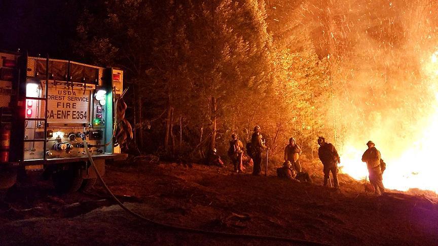 California'daki yangınlarda ölenlerin sayısı 81'e yükseldi